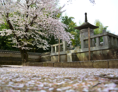 Ieyasu Determined to Establish the Peaceful Country at Daijuji Temple in Okazaki
